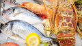 Fresh seafood arrangement displayed in market Stock Image