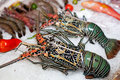 Fresh seafood in asian market Royalty Free Stock Photos