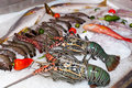 Fresh seafood in asian market lobsters prawns and fish Royalty Free Stock Photos