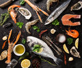 Fresh seafood on black stone close up Royalty Free Stock Images