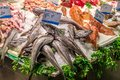 Fresh seafood on display at a market Royalty Free Stock Image