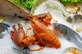 Fresh Seafood on Ice Royalty Free Stock Photo