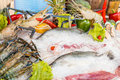 Fresh seafood on ice mix Royalty Free Stock Photos