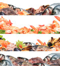 Fresh seafood and useful sea products for every taste Royalty Free Stock Image