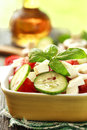 Fresh seasonal salad vegetables Stock Photography