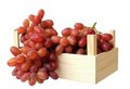 Fresh seedless grape in crate Royalty Free Stock Photo
