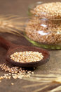 Fresh sesame seeds Stock Photo