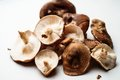 Fresh shiitake mushrooms Royalty Free Stock Photo