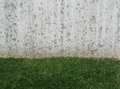 Fresh short lush green grass and modern concrete wall with beige Royalty Free Stock Photo