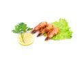 Fresh shrimps with lemon whole background and closeup Stock Photo
