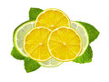 Fresh slices lime and lemon with leaf mint on white Royalty Free Stock Photo