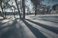 Fresh snow and shadows on a sunny winter day Royalty Free Stock Photo