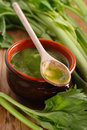 Fresh soup of celery in earthen bowl Stock Photos