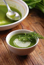 Fresh soup of celery in white bowl Stock Photography