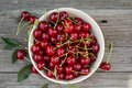 Fresh sour cherry in a bowl Royalty Free Stock Photos
