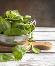 Fresh spinach in bowl on wooden table Stock Photos