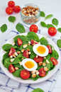 Fresh spinach salad with eggs and tomatoes Royalty Free Stock Images