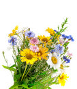 Fresh spring bouquet Stock Image