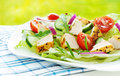 Fresh spring chicken salad with cherry tomatoes and rucola healthy dietetic dinner outdoor on white plate Stock Image