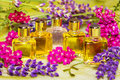 Fresh spring flowers with essential oil colourful pink and purple clear glass bottles of for use in aromatherapy or perfumery Stock Photos