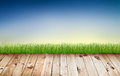 Fresh spring green grass with blue sky and wooden floor Royalty Free Stock Image