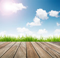 Fresh spring green grass with blue sky and wooden floor with sun light Royalty Free Stock Images