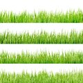 Fresh spring green grass isolated eps on white background and also includes vector Stock Images