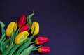 Fresh spring red and yellow tulip bouquet flowers closeup macro in the lower left corner on black background top view w