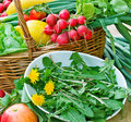 Fresh spring salad edible dandelion and fruit and vegetable Royalty Free Stock Photo