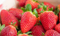 Fresh Strawberries. Royalty Free Stock Photos