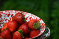 Fresh Strawberries in colander green background Royalty Free Stock Photo