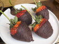 Fresh strawberries dipped in dark chocolate gourmet covered on white plate Stock Photography
