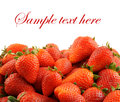 Fresh strawberries isolated with room for text Stock Image