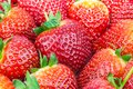 Fresh strawberries macro view of red ripe juicy Royalty Free Stock Image