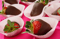 Fresh strawberries in melted chocolate Stock Photos