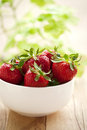 Fresh strawberries organic fruit Stock Images
