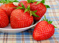 Fresh strawberries in a white plate on a picnic tablecloth checkered Stock Images