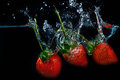 fresh strawberry dropped into water with splash on black backgrounds Royalty Free Stock Photo