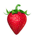 Fresh strawberry isolated Stock Photo