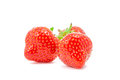 Fresh strawberry on white background Stock Photography