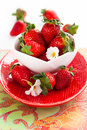 Fresh strawberry white bowl Royalty Free Stock Photo