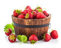 Fresh strawberry in wooden bucket with green leaf Royalty Free Stock Photo