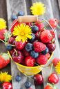 Fresh summer berries in a bucket cherry strawberry blueberry and raspberry on wooden table Royalty Free Stock Photography
