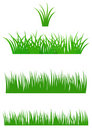 Fresh Summer Grass Stock Images