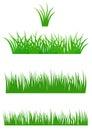 Fresh Summer Grass Royalty Free Stock Photo