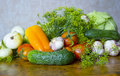 Fresh summer harvest of vegetables from the garden closeup Royalty Free Stock Photo
