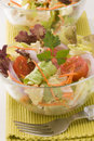 Fresh summer salad. Royalty Free Stock Photo