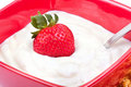 Fresh sweet strawberry in yoghurt Royalty Free Stock Photography