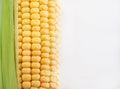 Fresh sweet yellow corn Royalty Free Stock Photo