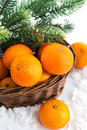 Fresh tangerine in a basket with spruce branch Stock Photo
